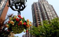 【钱江绿洲】感受惬意之境  享受家在公园里的生活