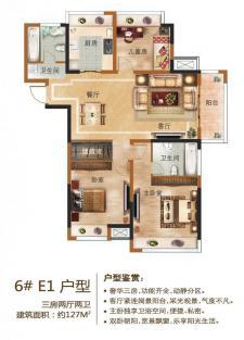 6#E1户型三房两厅两卫