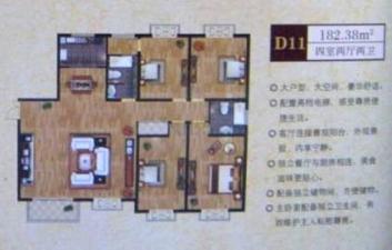 D11戶型