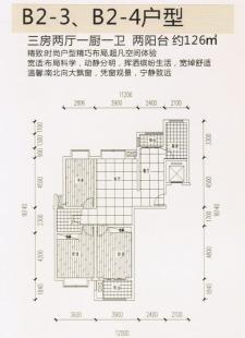 B2-3、B2-4户型三房两厅