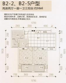 B2-2、B2-5户型两房两厅