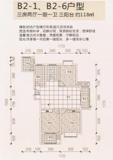 B2-1、B2-6户型三房两厅