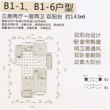 B1-1、B1-6户型三房两厅