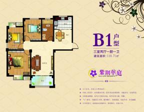 B1戶型三室兩廳